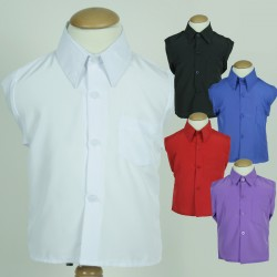 299 Silk Dress Shirt