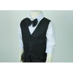TT9D Pinstripe Vest Suit